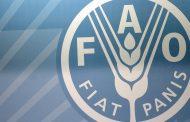 ارتفاع أسعار الأغذية العالمية 2.3% في يوليو