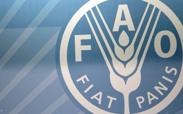 فاو: أسعار الغذاء العالمية تهبط فى يونيو بفعل تراجع الألبان
