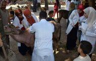 رسميا... الإنتهاء من تحصين 1.9 مليون رأس من الماشية لمكافحة الحمي القلاعية.. والبحيرة الاولي