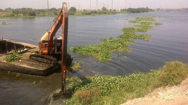 خبير مياه يشرح طرق مكافحة ورد النيل لتقليل الفاقد