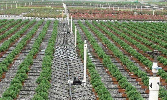 وزير الري:مصر تواجه 3 تحديات في إدارة الموارد المائية في القطاع الزراعي