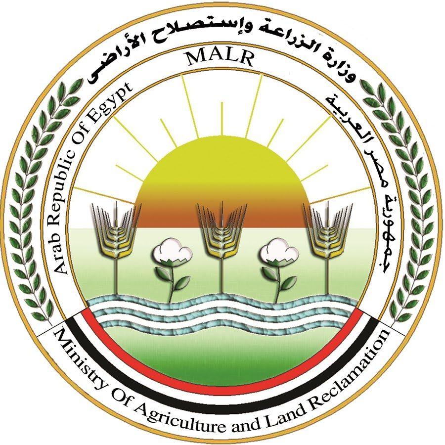 الإصلاح الزراعي : 162 مليون جنيه حصيلة المزادات العلنية للتصرف في أراضي الهيئة