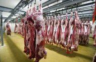 الزراعة استيراد 192 ألف طن لحوم ومنتجاتها تطرح بالأسواق استعداد للعيد