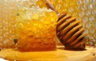خبير نحل يستعرض الاستخدامات والفوائد العجيبة لشمع النحل