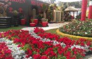 عايز تعرف ان بلدك جميلة...لحظات في مهرجان الاورمان للزهور