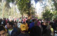 إزدحام حديقة الحيوان بالجيزة...وعدد زوار الحدائق يرتفع إلي 150 ألفا في 3 أيام