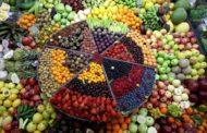 لجنة ذبابة الفاكهة تبحث اليوم حماية 14 محصولا من مخاطر الآفة القاتلة