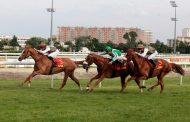 اليوم... التحدي الكبير لسباق الخيول العربية في فرنسا بمشاركة اوروبية