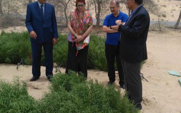 نقيب الزراعيين يلتقي مدير المركز الدولي للزراعة الملحية في دبي (صور)