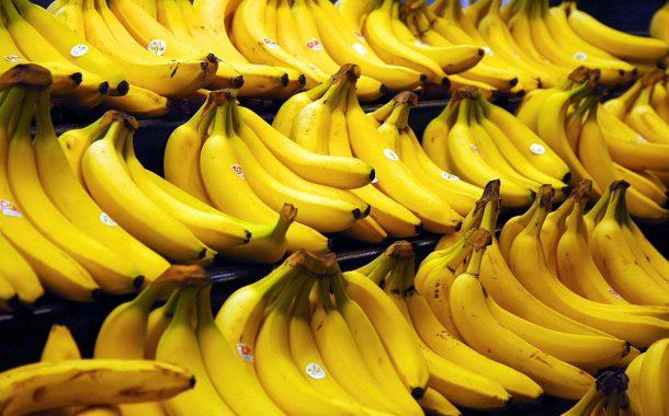 بالفيديو .. تعرف على رحلة الموز من جني الثمار وتعليبه حتى تصديره