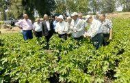 وزير الزراعة يتلقي تقريرا عن مكافحة الآفات علي المحاصيل الحقلية والبستانية