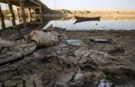 تحليل إقتصادي: السدود التركية تخفض زراعات القمح في العراق وترفع من فاتورة الاستيراد