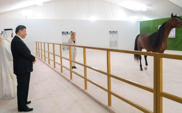 ما هي قصة الحصان الذي أهداه محمد بن زايد للرئيس الصيني؟