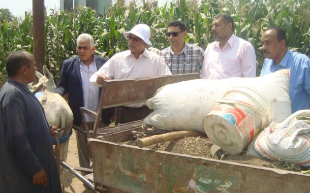 عاجل... وزير الزراعة: إحالة 15 مسئولاً بالجمعيات الزراعية للنيابة بسبب التلاعب في صرف الاسمدة