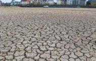 الجفاف يضرب نهر الراين في 5 دول أوروبية