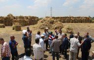 البيئة: مواصلة تنفيذ خطط تدوير قش الأرز وتطوير مكامير الفحم