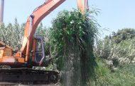 الري تواصل حملات الازالة علي التعديات بإزالة 343 حالة تعدي على نهر النيل والمجاري المائية في يوم واحد