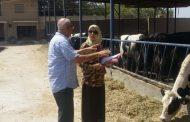 الزراعة توافق علي منح 1096 ترخيصا لمشروعات الانتاج الحيواني والداجني والاعلاف خلال شهر واحد