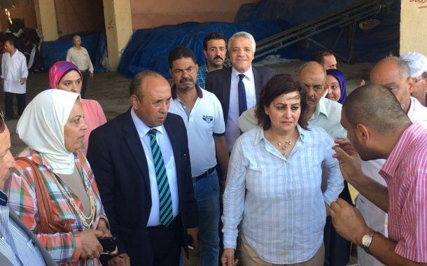نائب وزير الزراعة تتفقد مجزر العامرية بالاسكندرية إستعدادا لعيد الأضحي