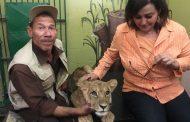 البيئة: ضبط حيوانات مهددة بالإنقراض بالإسكندرية
