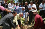 خلال أيام...إنطلاق المرحلة الثانية لمبادرة الرئيس السيسي لزراعة مليون شجرة مثمرة