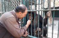 الخطة النهائية لإستقبال زوار حدائق الحيوان بالقاهرة والمحافظات (صور)