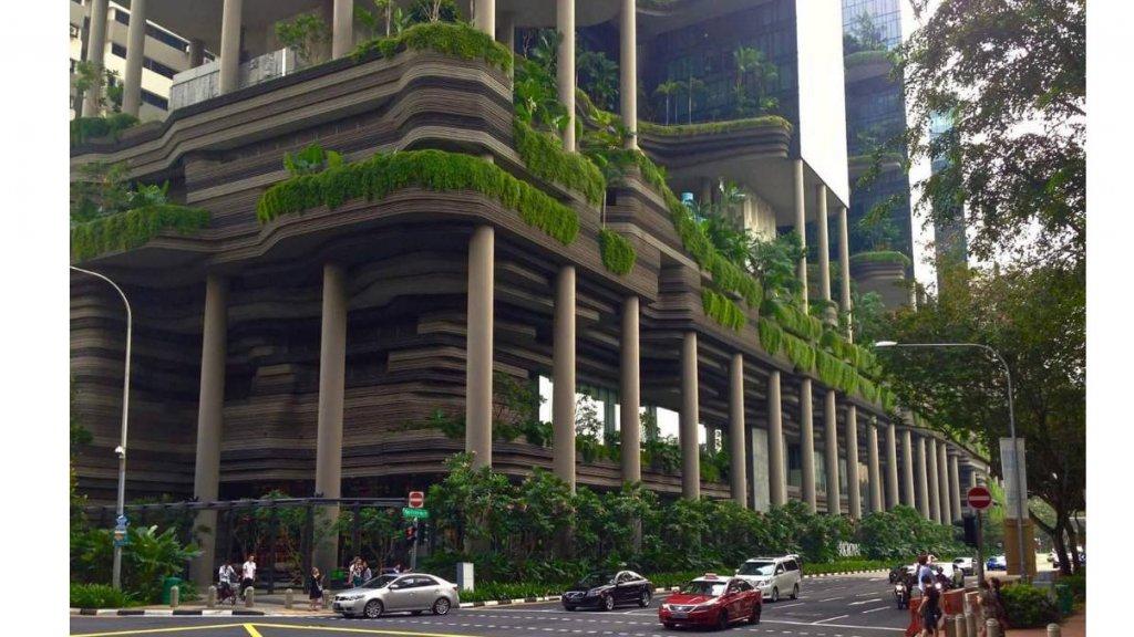 قصة مدينة تحولت من القرصنة إلي حديقة نباتات طبيعية