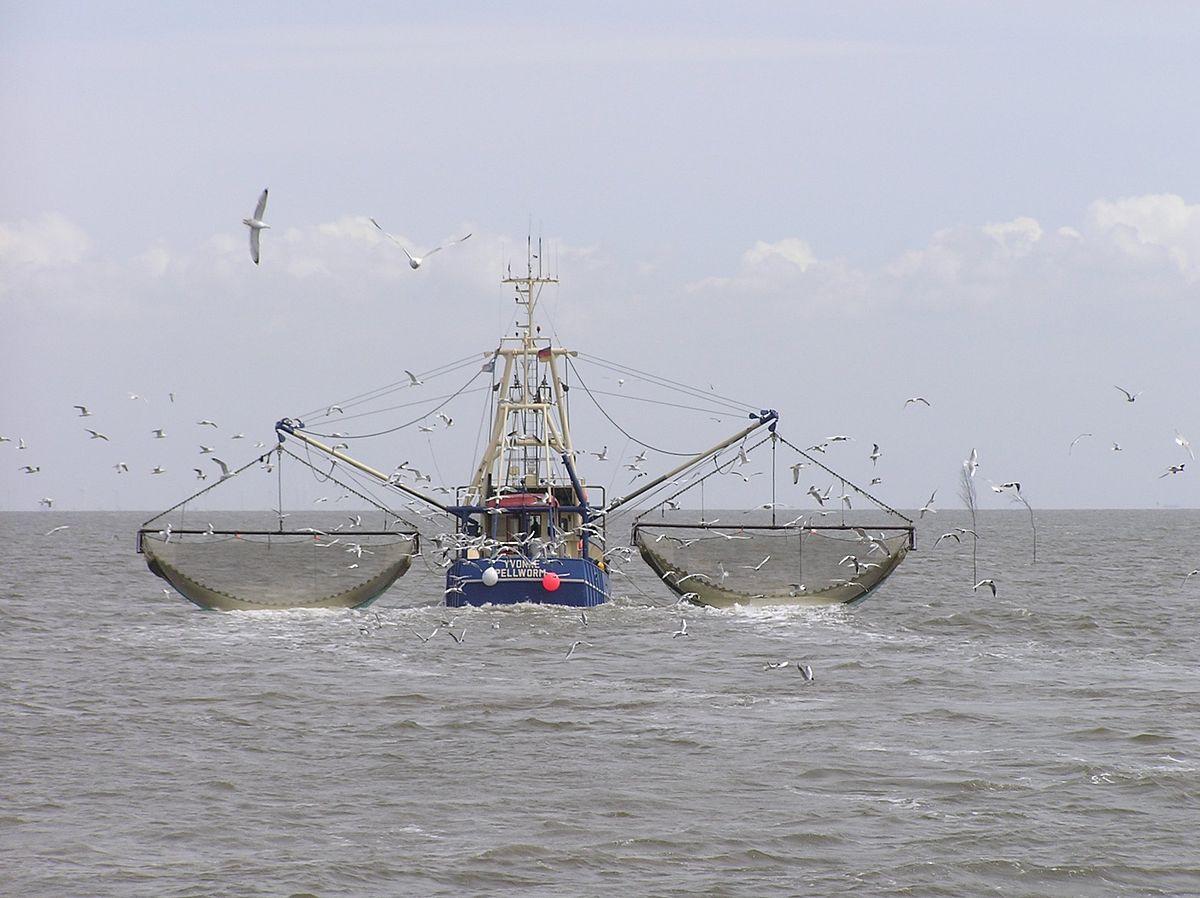 مركب صيد تطلب إنقاذها من الغرق بالبحر الاحمر