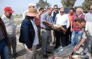 بالصور...وزير الزراعة ومحرز يتفقدان مشروع مريوط للاستزراع السمكى