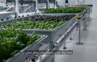 بالفيديو .. المزرعة الآلية هل هكذا سنزرع محاصيلنا مستقبلاً؟