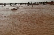 الزراعة ترفع حالة الطوارئ لمواجهة الامطار والسيول بالمحافظات