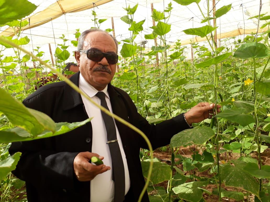 رئيس مركز بحوث الصحراء: خطط لتطوير الإنتاج الزراعي بإنتاج محاصيل غير تقليدية لتحسين العائد من الزراعة