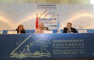 مصر تعلن تفاصيل مشروعي برنامج الأمم المتحدة الإنمائيلدمج إجراءات التنوع البيولوجي بقطاع السياحة والتغير المناخي