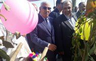 بالصور...ماذا قال وزير الزراعة عن مهرجان سيوه للتمور؟