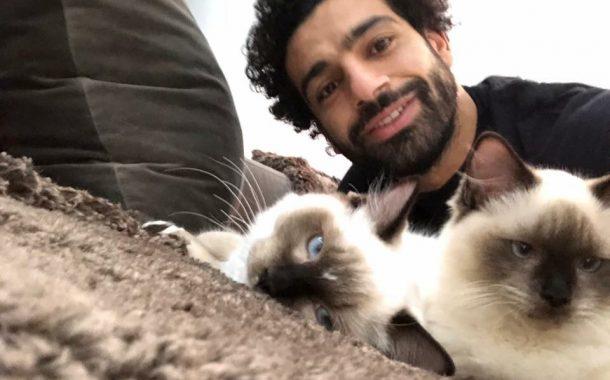 ما تعليق اللاعب العالمي محمد صلاح عن أزمة تصدير القطط والكلاب