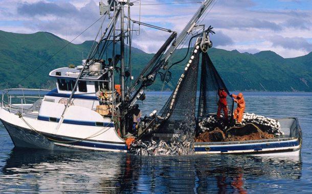 الفاو: أسطول الصيد في البحر المتوسط والأسود يضم 86 الفا و 500 سفينة (تفاصيل)