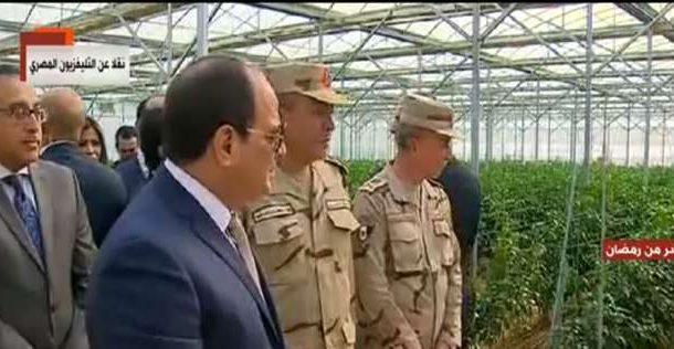 لماذا تدخلت الدولة في إنتاج التقاوي؟ والرئيس يرد: بعد زيادة أسعار البطاطس