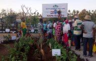 بالصور...وزير الزراعة: عام 2019 سوف يشهد تطوراً كبيراً في العلاقات المصرية الافريقية وإنشاء مزارع جديدة في 5 دول جديدة