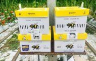 بالفيديو ..خبراء: مشروع الصوب الزراعية يحتاج لتوفير نوع خاص من الحشرات(تفاصيل)