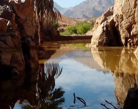 الري: إعداد أطلس سيول جنوب سيناء لتحديد أنشط الاودية للحد من مخاطرها علي الإستثمار الاقتصادي