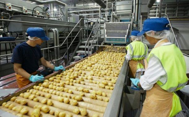 أحدث تقرير دولي عن سلامة الغذاء: خطوات تطبيق معايير السلامة من المزرعة للمستهلك