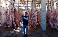 الزراعة تفاجئ الاسواق بمضبوطات اللحوم والدواجن الفاسدة قبل العيد