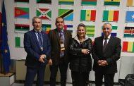 الاتحاد الأوربي يعلن الطوارئ لمواجهة آفة الزيتون القاتلة في العالم... ومصر تترقب