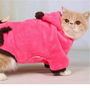 قم بصنع رداء من الصوف لتدفئة قطتك