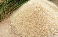 الحكومة تتعاقد علي شراء 40 ألف طن أرز صيني ... و