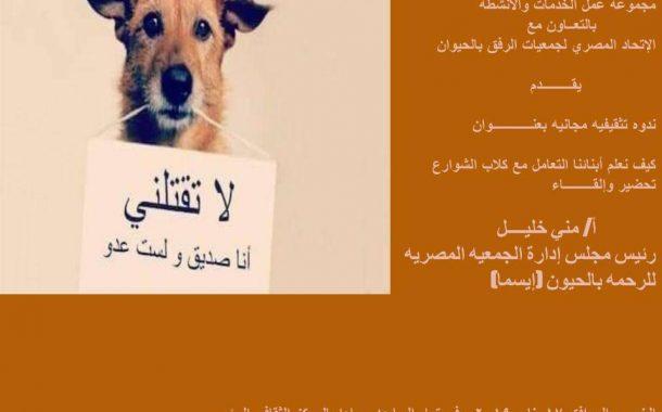 الخميس...ندوة بمدنية الشيخ زايد للتعريف بالتعامل مع كلاب الشوارع