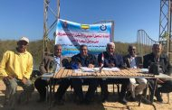 مصر تخطط لتحويل محافظة البحر الأحمر عاصمة لغابات المانجروف لجذب السائحين وحماية الشواطئ