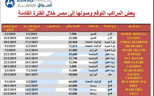 تقرير إقتصادي: إستيراد 632 ألف طن من 6 سلع في 35 يوما