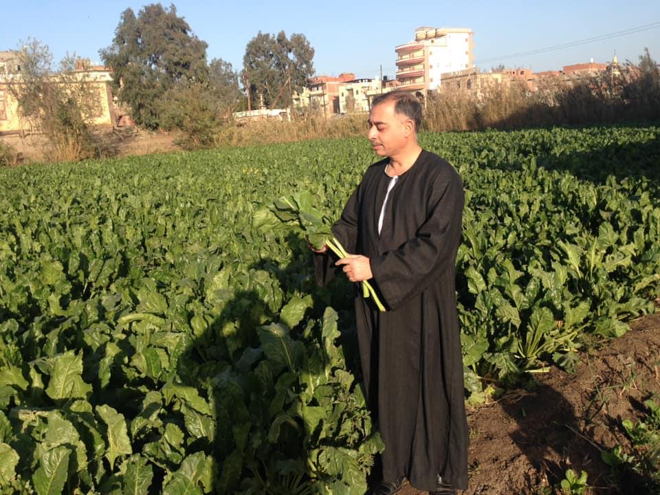 د خالد وصيف يكتب: غابت المياه وحضر البنجر...حكايات بسطاء القرية