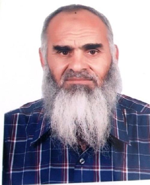 د عبد السلام منشاوي يكتب: القمح الطريق الأصلي لتحقيق الأمن الغذائي المصري